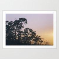 Pastel sunrise at Mt. Wellington Art Print