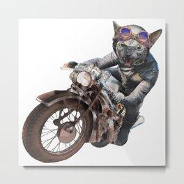 Cat Racer Metal Print