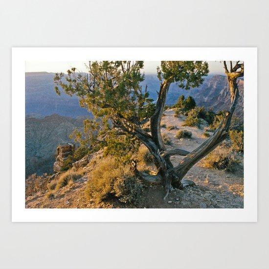 Treedom Art Print
