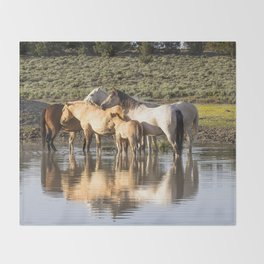Reflection of a Mustang Family Throw Blanket