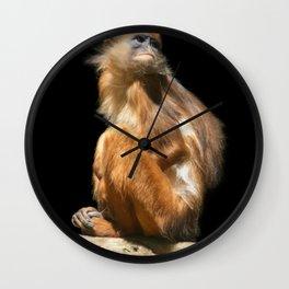 Banded Leaf Monkey Howletts Wall Clock