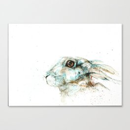 Scared blue hare Canvas Print