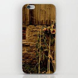 Farm Treasures iPhone Skin