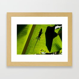 lizard on a leaf Framed Art Print
