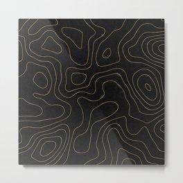 Topographic Imaginary Landscape Metal Print