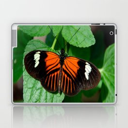 Perched Doris Longwing Butterfly Laptop & iPad Skin