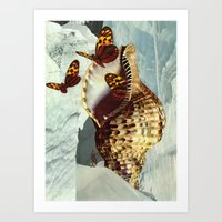shell Art Prints featuring Shell by David Delruelle