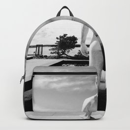 Bare Butt Black Pool Backpack