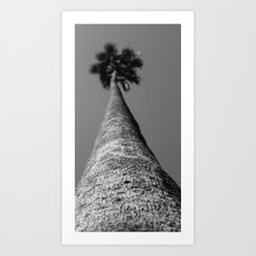 Blurry Palm Art Print