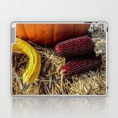 Autumn Still Life (ii) Laptop & iPad Skin