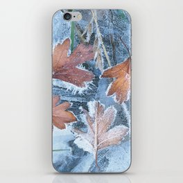 Leaves in the ice iPhone Skin