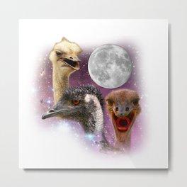 Three Moon Ostrich Metal Print