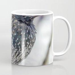 Starling. Coffee Mug