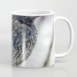 Starling. Coffee Mug