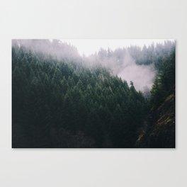 Forest Fog V Canvas Print