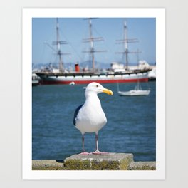 seagull and the sea Art Print