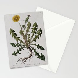 Botanical Dandelion Stationery Cards