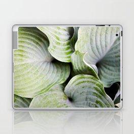 Cucumber Salad Laptop & iPad Skin