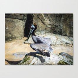 Flapping Bird Canvas Print