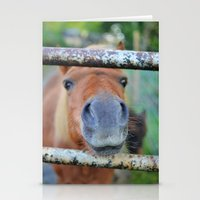pony Stationery Cards featuring Pony by Blown A Wish Photography