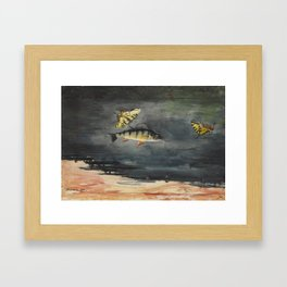 Vintage Winslow Homer Fish & Butterfly Painting (1900) Framed Art Print