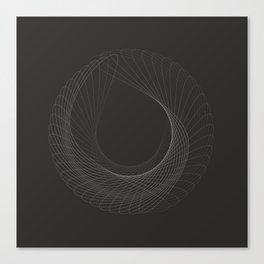 toroid.i Canvas Print