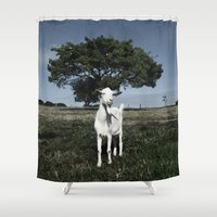 goat Shower Curtains featuring Goat by Ana Francisconi