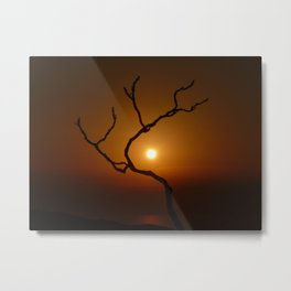 Evening Branch I Metal Print