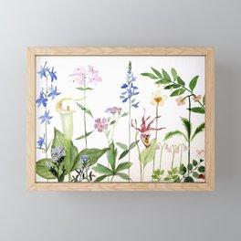 Botanical Garden Flower Wildflower Watercolor Art Framed Mini Art Print