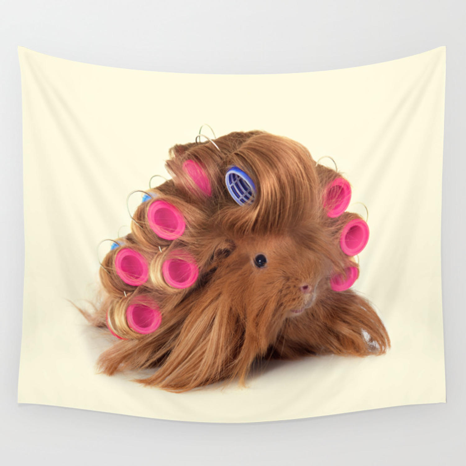 Curly Guinea Pig Wall Tapestry By Paulfuentes Society6