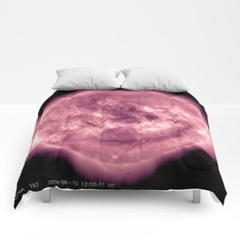 Mauve Star Solar Flares Comforters