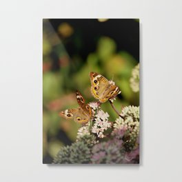 Butterfly Dance Metal Print
