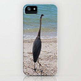 Restless Summer iPhone Case
