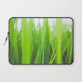Summer is green Laptop Sleeve