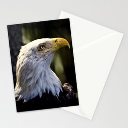 Proud Bald Eagle Stationery Cards