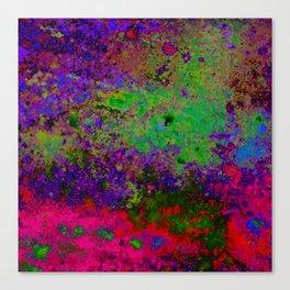 Random Colors Canvas Print