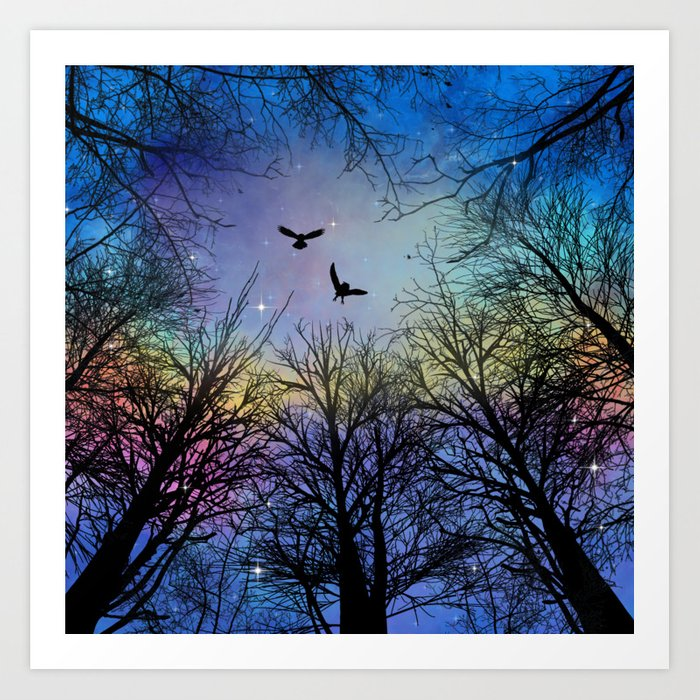 Wisdom Of The Night - Colorful Kunstdrucke