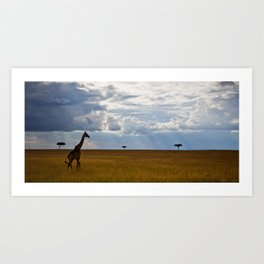 Above the Grass Art Print