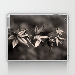 Japanese Maple Leaves in Sepia Laptop & iPad Skin