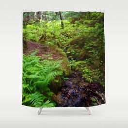 Hiking in Whistler-Blackcomb Shower Curtain