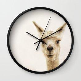 Alpaca Portrait Wall Clock