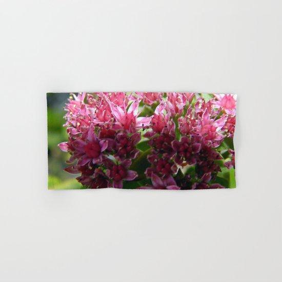 Sedum Flowers and the Ant Hand & Bath Towel