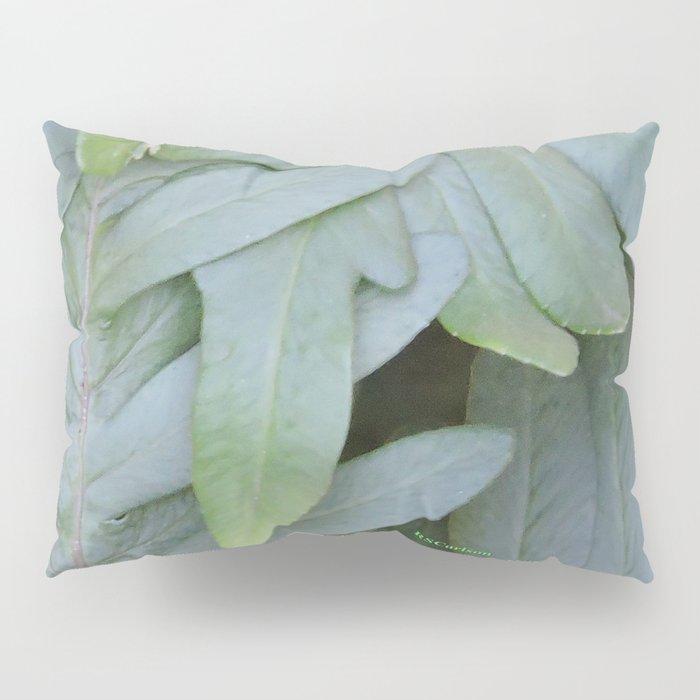 TEXTURES -- Ferns Enfolded Pillow Sham