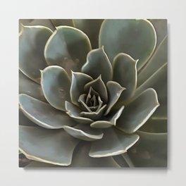 Garden Succulent Green Gray Tones Metal Print