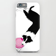 Disc Dog - Border Collie iPhone 6s Slim Case