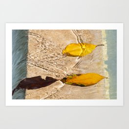Flow with the river Art Print