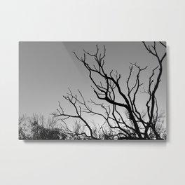 Tree in The Winter Metal Print