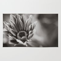 Flower in Black and White Rug