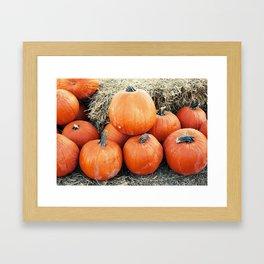 Vintage Pumpkin Pile Framed Art Print