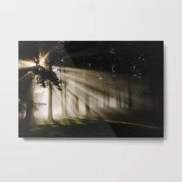 Boring Forest Metal Print